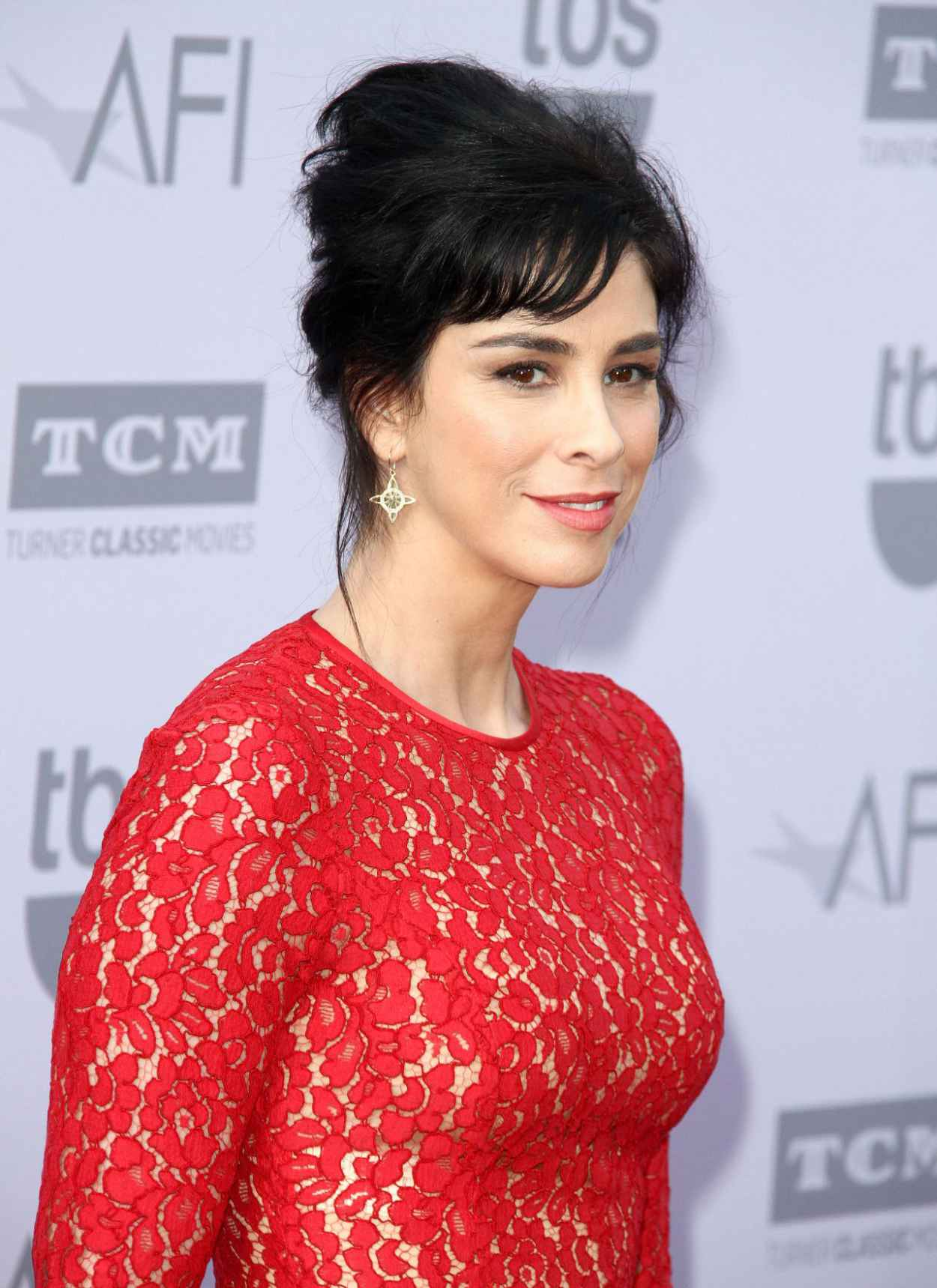 Sarah Silverman - 2015 AFI Life Achievement Awards in Hollywood-5