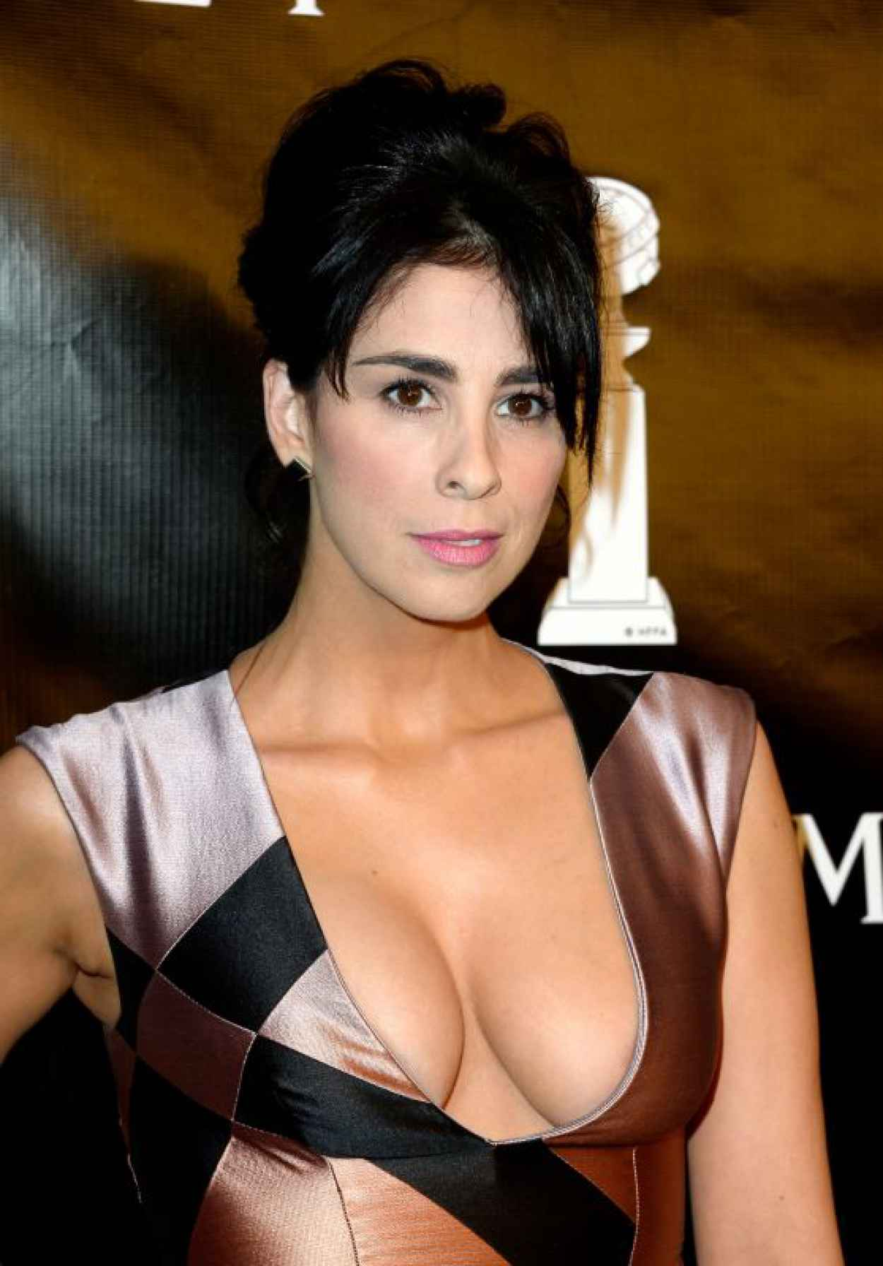 Sarah Silverman - 2015 Hollywood Foreign Press Association Grants Banquet in Beverly Hills-1