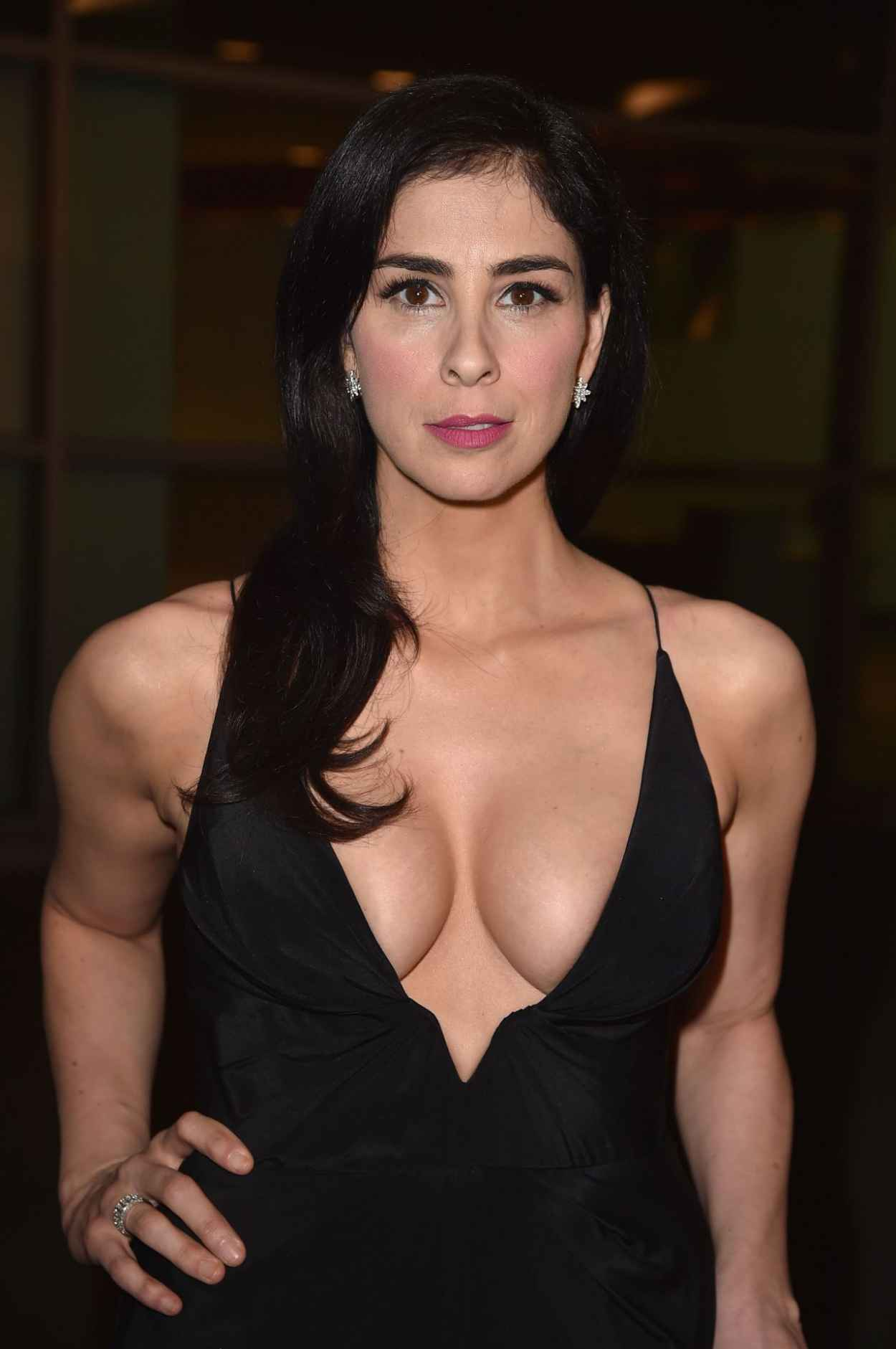 Sarah Silverman - I Smile Back Premiere in Hollywood-2