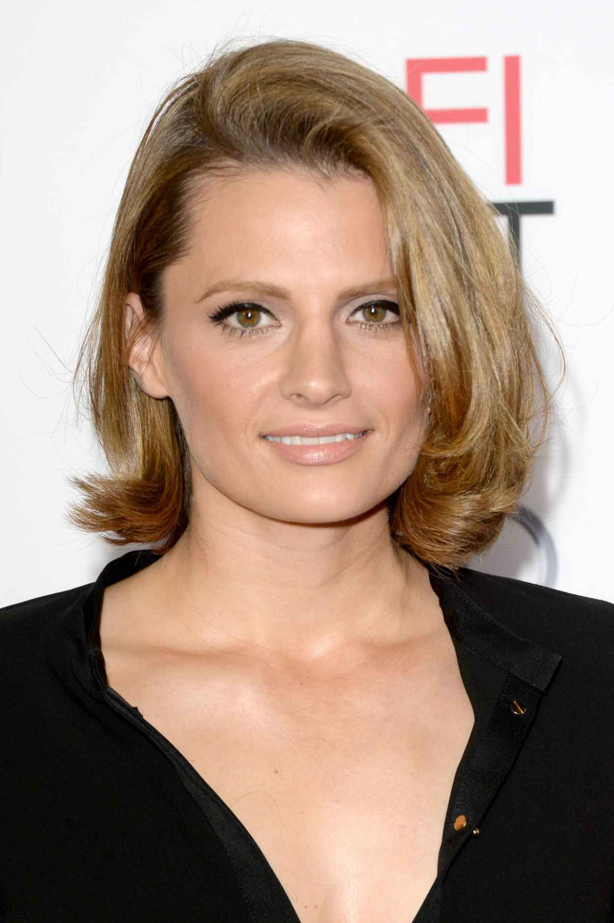 Stana Katic on Red Carpet – SAVING MR. BANKS Movie ...