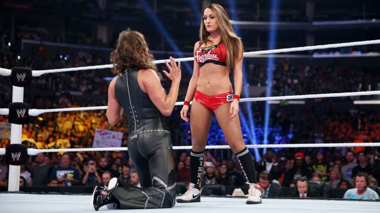 Stephanie McMahon in a Tight Leather Outfit - WWE SummerSlam in Los Angeles - August 2015-4