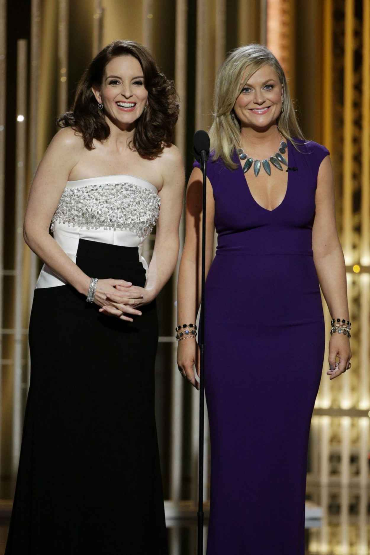 Tina Fey - 2015 Golden Globe Awards in Beverly Hills-5