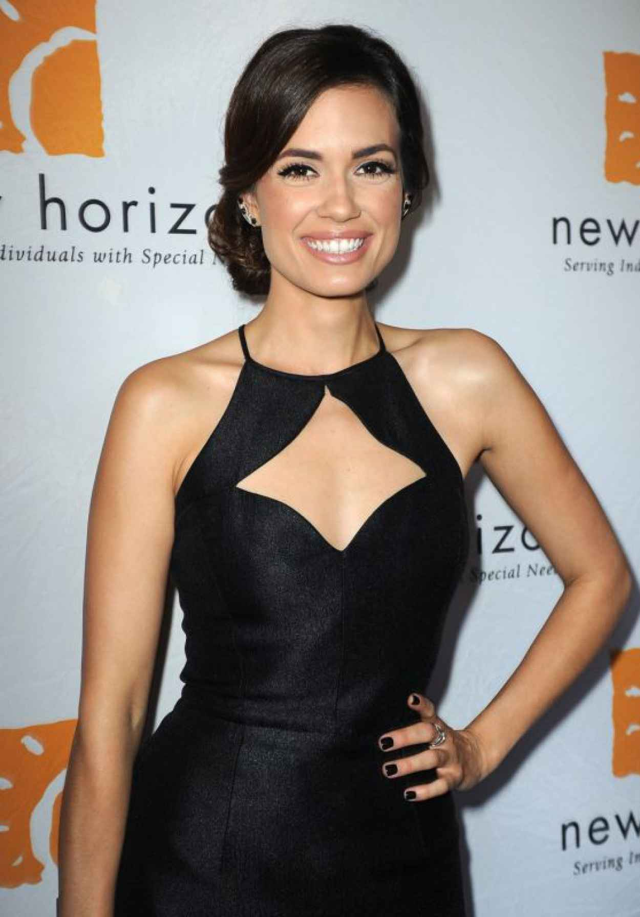 Torrey DeVitto - New Horizons Havana Nights 2015 Gala Fundraiser-1