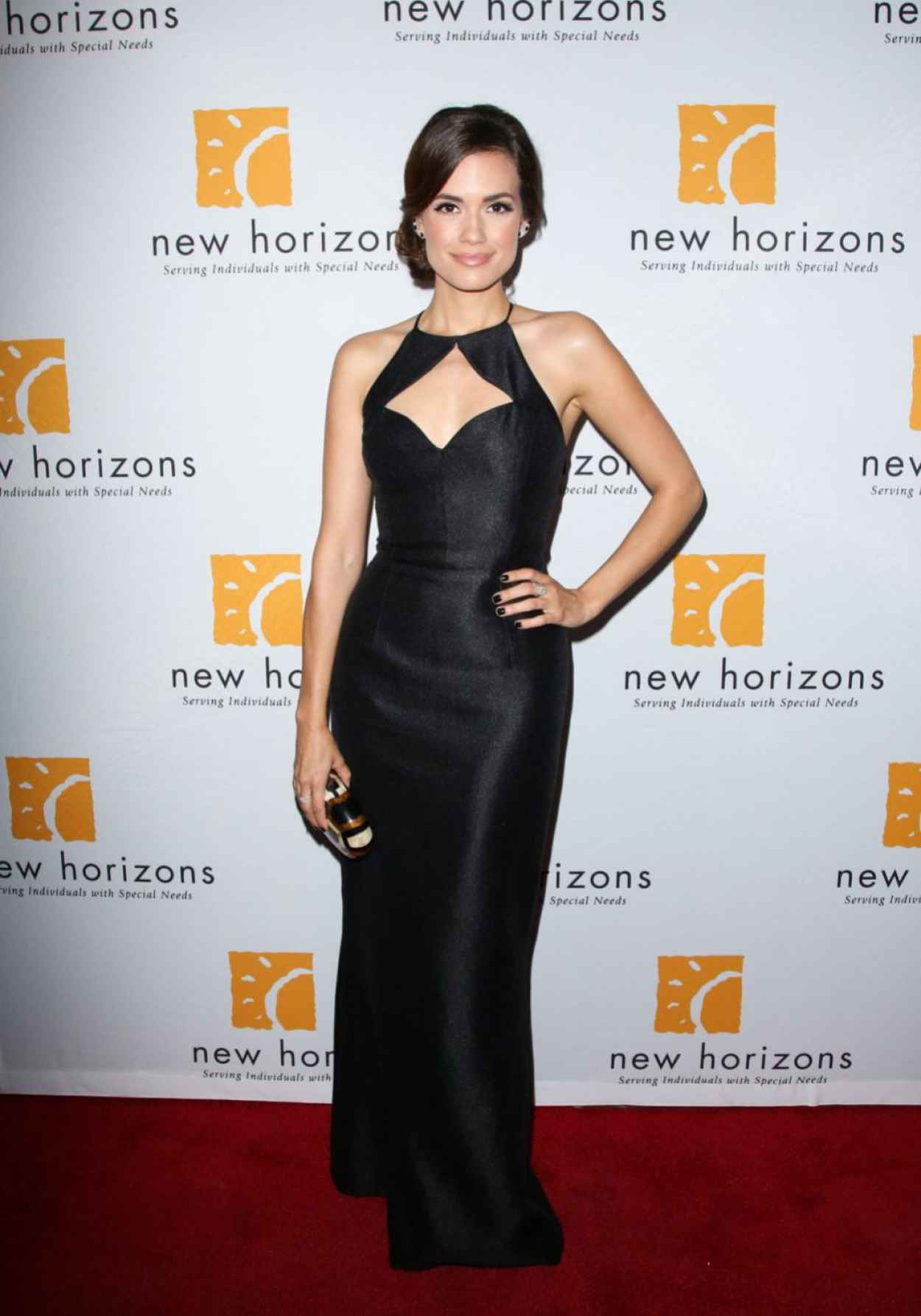 Torrey DeVitto - New Horizons Havana Nights 2015 Gala Fundraiser-5
